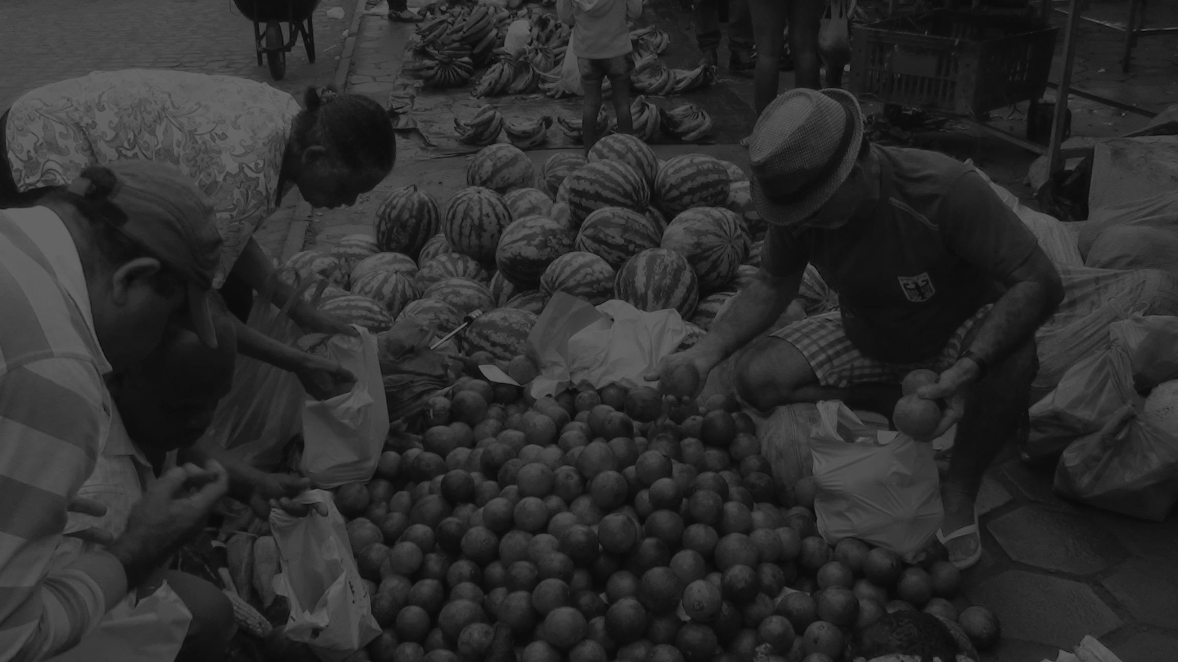 Alimentação CPLP! | Impacto do Covid-19 na alimentação nos países da CPLP | Alimentação familiar | Agricultura sustentável | COVID-19 Medidas dos Paises/Cidades da UCCLA