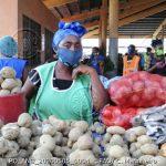 Adicionando uma perspetiva de género na resposta da FAO à COVID-19 – Programa de orientação