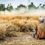 Covid-19: Relator da ONU diz que pandemia deverá criar mais 176 milhões de pobres