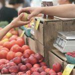 Brasil: Instituto Fome Zero e UFRGS se unem para promover a segurança alimentar e nutricional